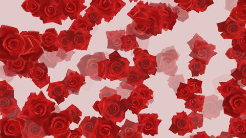 Flower 2 R2S HD Animation