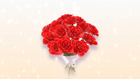 Rose Bouquet A1 Stock Video Footage