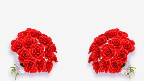 Rose Bouquet B1 Animation