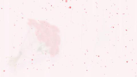 Rose Bouquet D1 Stock Video Footage