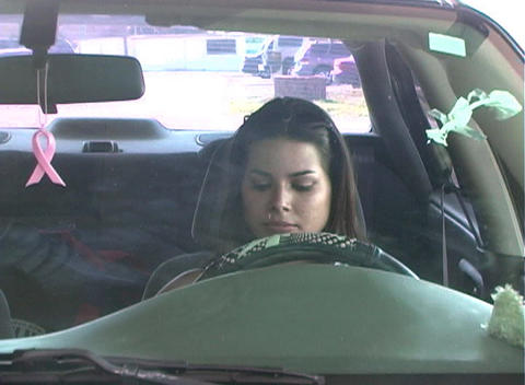Beautiful Brunette Enters Her Car-3a Footage