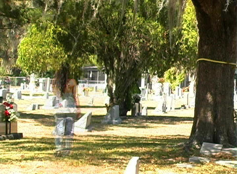 Female Ghost in a Cemetery (2) Stock Video Footage