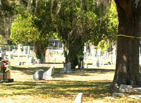 Female Ghost in a Cemetery (2) Footage