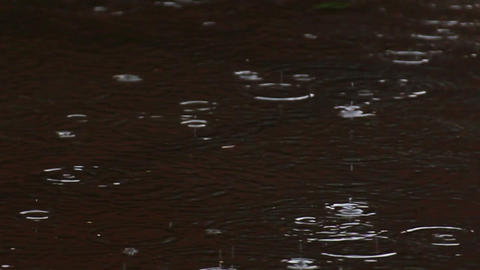 heavy rain drops - slow motion Stock Video Footage