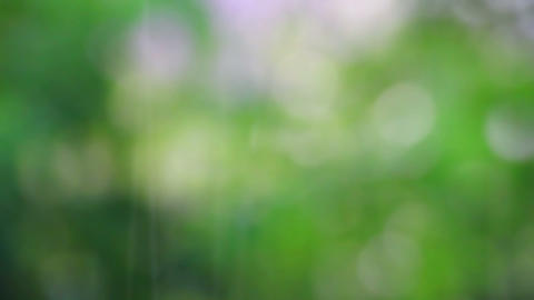 abstract summer rain defocused background Stock Video Footage