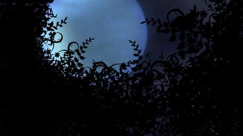 halloween intro 3 Stock Video Footage