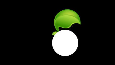 Circle w Leaf Stock Video Footage
