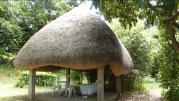 Thatched pavilion with a bath tub, London (Thatche Stock Video Footage