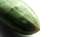 Cucumber Stock Video Footage