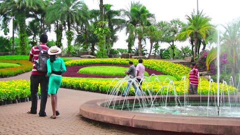 people walks in famous Nong Nooch tropical garden Stock Video Footage