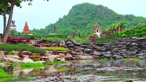 pond in Nong Nooch tropical garden in Thailand Stock Video Footage