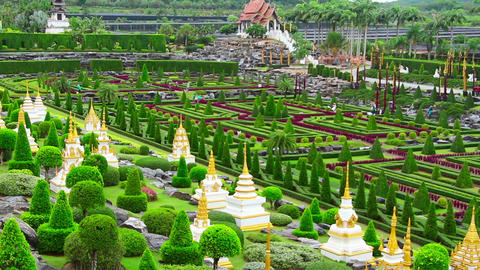 tropical garden Nong Nooch in Thailand Stock Video Footage