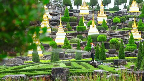 gardener watering in famous Nong Nooch tropical ga Stock Video Footage