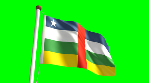 Central Africa flag Stock Video Footage
