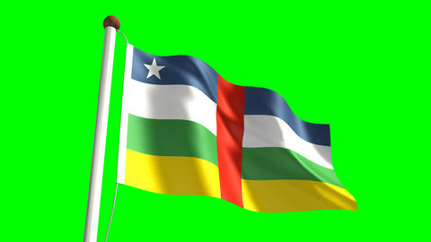 Central Africa Flag stock footage