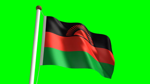 Malawi flag Stock Video Footage
