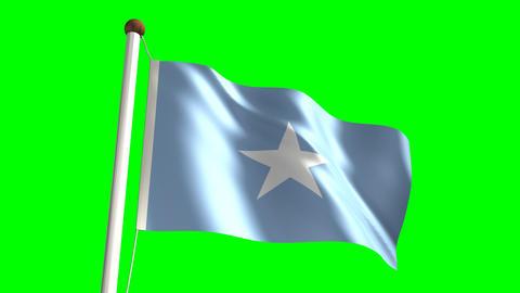 Somalia flag Stock Video Footage