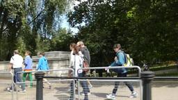 St. James's Park outside Buckingham Palace, United... Stock Video Footage