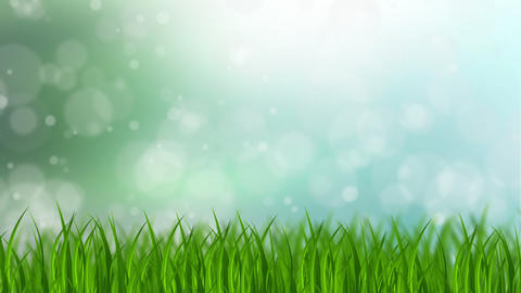 Grass Background Stock Video Footage