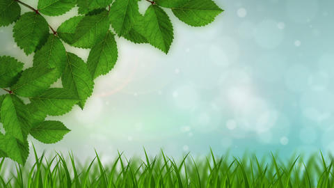 Nature Background Stock Video Footage