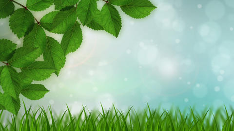 Nature Background Animation