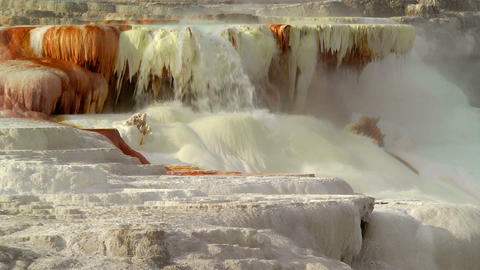 Canary Spring, Yellowstone Stock Video Footage