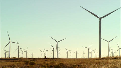 Wind Turbine Field Stock Video Footage