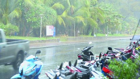 Heavy rain Stock Video Footage
