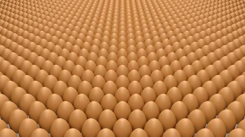 Eggs Stock Video Footage