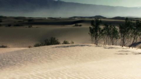 Dunes 011 HD-NTSC-PAL Stock Video Footage