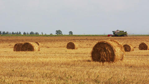 landscape with harvested bales of straw and combin Stock Video Footage
