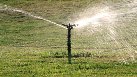 sprinkler watering green lawn Stock Video Footage