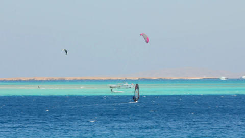 surfing - windsurfers and kitesurfer on blue sea s Footage