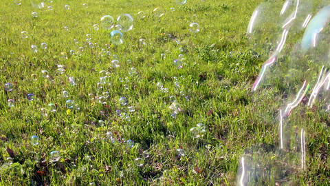 soap bubbles flying over green meadow Stock Video Footage