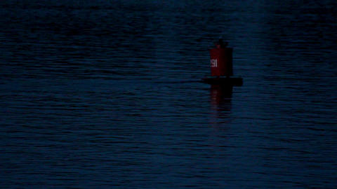 flashing buoy on the river at dusk Footage