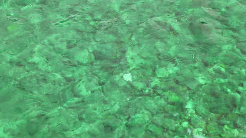 emerald water background in shallow Footage