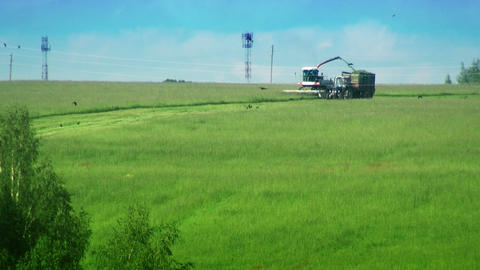 Combine and tractor in the field. Harvesting Green Stock Video Footage