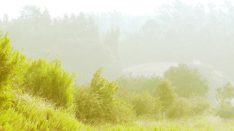 Country House in the Mist 2 Stock Video Footage