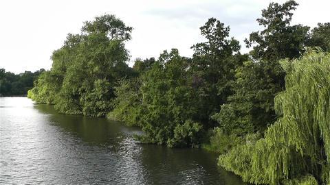 Hyde Park London 11 handheld Footage