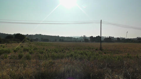 Mediterranean Field with Electric Pole 1 Stock Video Footage