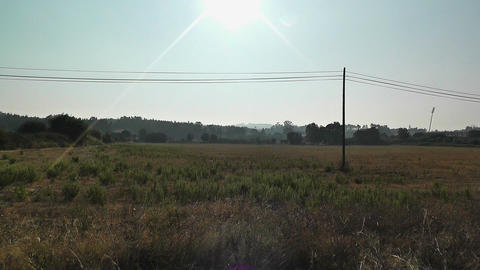 Mediterranean Field with Electric Pole 1 Footage