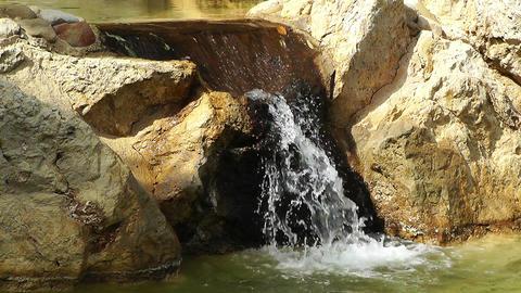 Mediterranean Palm Tree Garden 12 small waterfall Stock Video Footage