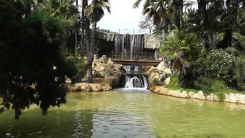 Mediterranean Palm Tree Garden 18 Footage