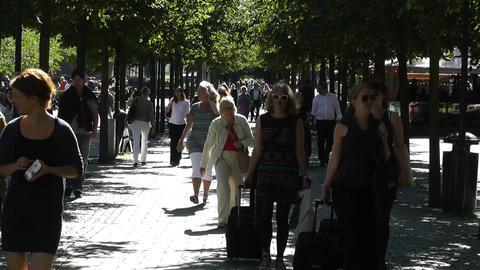 Stockholm Kungstradgarden 6 Footage
