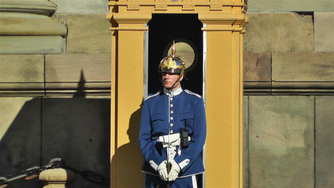 Swedish Royal Palace Stockholm 11 guard Footage