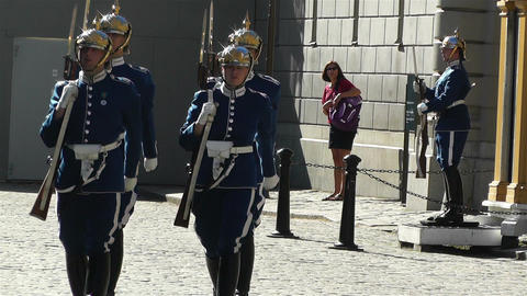Swedish Royal Palace Stockholm 23 guards Footage