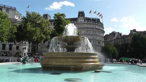 Trafalgar Square London 14 handheld Stock Video Footage