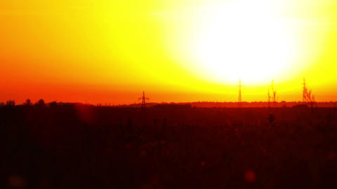 sunrise. summer landscape Stock Video Footage