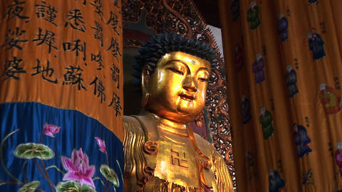 Golden Buddhas stock footage