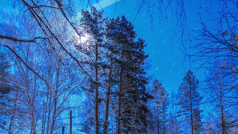 Moonlit Night on the cordon. Stars leave traces. T Stock Video Footage